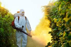 شركة رش مبيدات براس تنورة